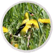 Male American Goldfinch Camouflage Round Beach Towel