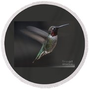 Male Anna Hummingbird In Flight Round Beach Towel