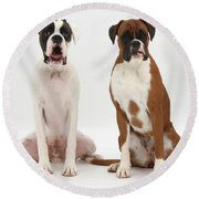 Male Boxer With Female Boxer Dog Round Beach Towel