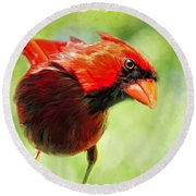 Male Cardinal Close Up - Digital Paint Round Beach Towel