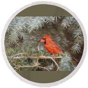 Male Cardinal In Spruce Tree Round Beach Towel