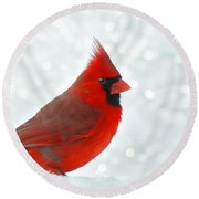 Male Cardinal In The Snow - Digital Paint Round Beach Towel
