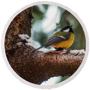 Male Great Tit Round Beach Towel