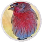 Male Housefinch - Digital Paint Round Beach Towel