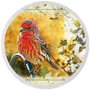 Male Housefinch Photoart Round Beach Towel