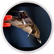 Male Hummingbird Anna's Coming In Too Low Round Beach Towel