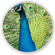 Male Indian Peacock Round Beach Towel