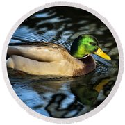 Male Mallard Round Beach Towel