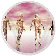 Male Muscular System From Four Points Round Beach Towel