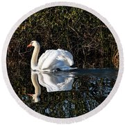 Male Mute Swan Round Beach Towel