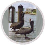 Male Pelicans Round Beach Towel