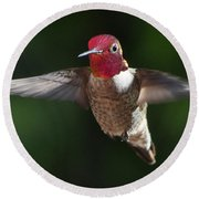 Male Redhead In Flight Round Beach Towel