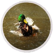 Mallard Bath Time Round Beach Towel