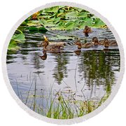 Mallard Ducks In Heron Pond In Grand Teton National Park-wyoming  Round Beach Towel