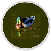 Mallard Male Duck Round Beach Towel