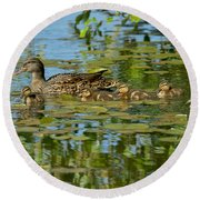 Mallard Mom And The Kids Round Beach Towel