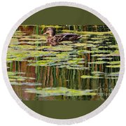Mallard Pond Round Beach Towel