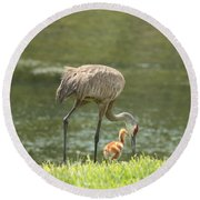 Mama And Chick Round Beach Towel