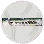 Mama Duckies And Her Babies Round Beach Towel