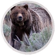 Mama Grizzly Round Beach Towel