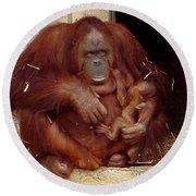 Mama N Baby Orangutan - 54 Round Beach Towel