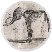 Mammoth Skeleton Round Beach Towel