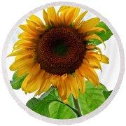 Mammoth Sunflower Round Beach Towel