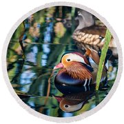 Mandarin Duck Reflections Round Beach Towel