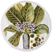 Mandrake And Buttercup Round Beach Towel