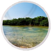 Mangrove @ Safehaven Sound Round Beach Towel