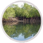Mangrove Refelections Round Beach Towel