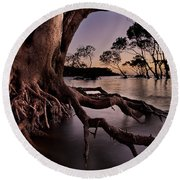 Mangrove Roots Round Beach Towel