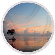 Mangrove Tree In Water At Sunrise Round Beach Towel
