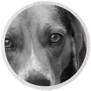 Man's Best Friend In Black And White Round Beach Towel