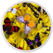 Many Butterflies On Mums Round Beach Towel