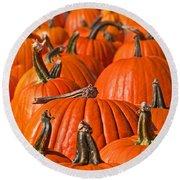 Many Pumpkins In A Row Art Prints Round Beach Towel