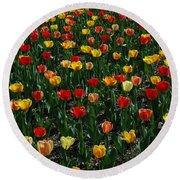 Many Tulips Round Beach Towel