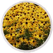 Many Yellow Blooms Round Beach Towel