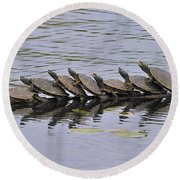 Map Turtles Round Beach Towel