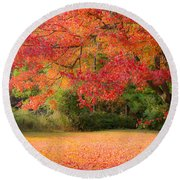 Maple In Red And Orange Round Beach Towel