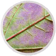 Maple Leaf Macro Round Beach Towel