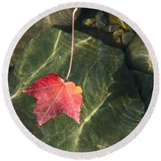 Maple Leaf On Water Round Beach Towel