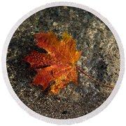 Maple Leaf - Playful Sunlight Patterns Round Beach Towel