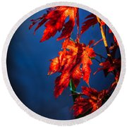 Maple Leaves Shadows Round Beach Towel