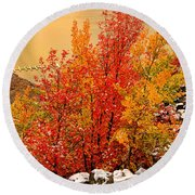 Maples Along The Palisades Round Beach Towel