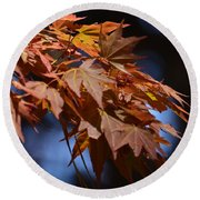Maples In Spring 2013 Round Beach Towel
