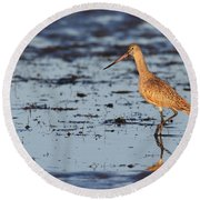 Marbled Godwit At Sunset Round Beach Towel