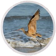Marbled Godwit Taking Off On Beach Round Beach Towel