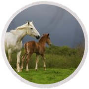 Mare And Foal, Co Derry, Ireland Round Beach Towel