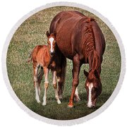 Mare With Foal Round Beach Towel